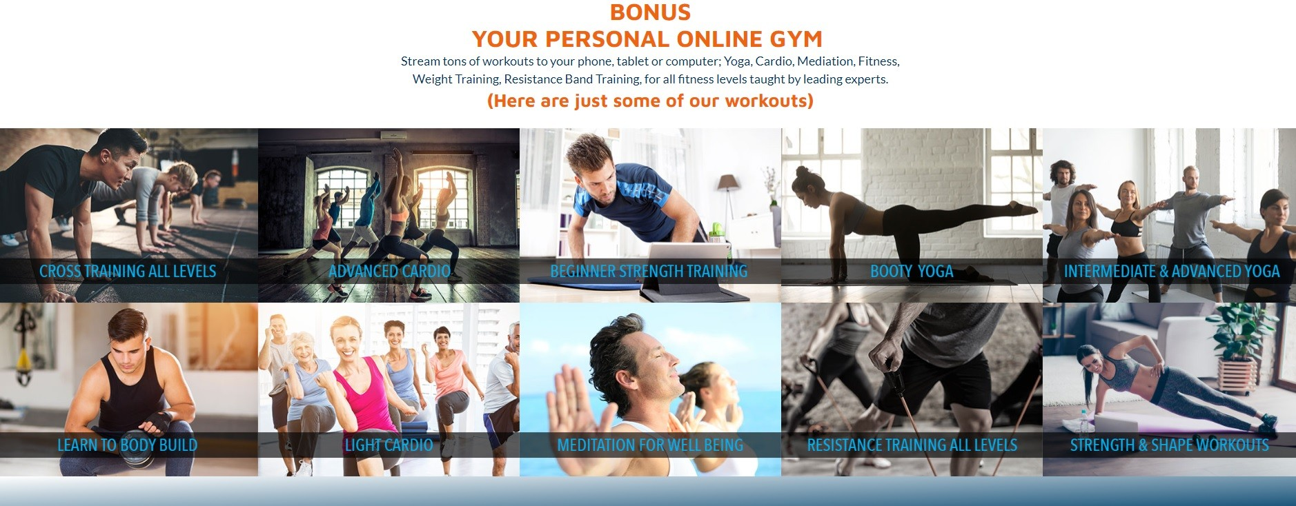 Losers Welcome Personal Online Gym
