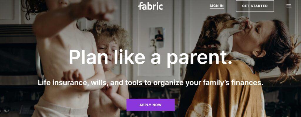 Meet Fabric